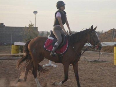 Clases para aprender a montar a caballo Valladolid