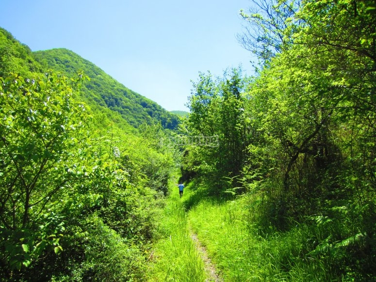 Valley route with expert guide