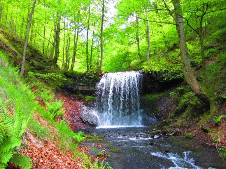 Amazing natural environment
