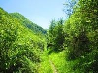 Passing through different paths in Navarra