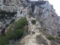 陡峭的路径