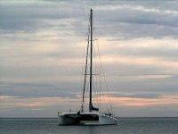 Paseos en catamarán por la bahía de Palma