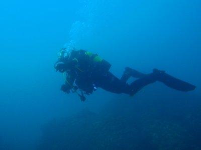 兰萨罗特岛的PADI海豹队课程