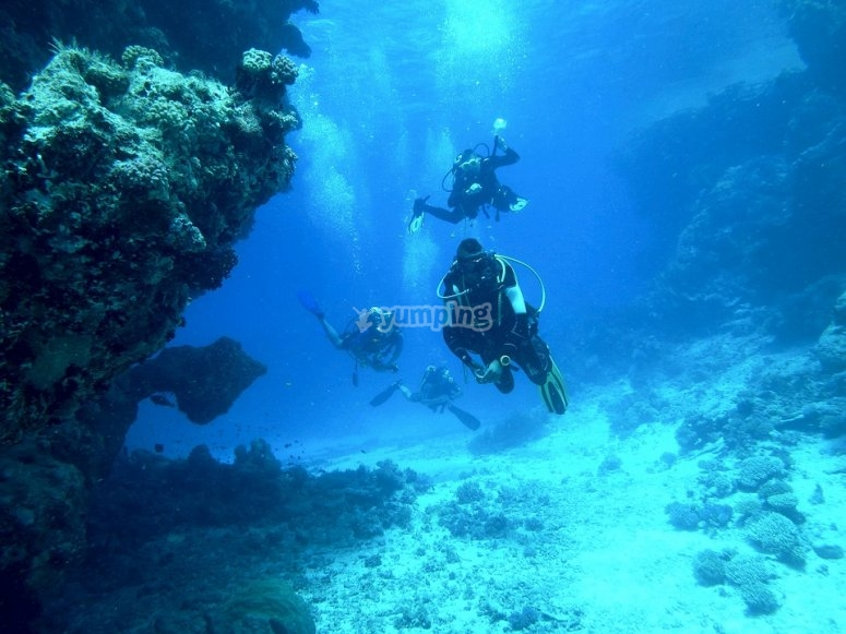 Descubre el fondo marino del atlantico
