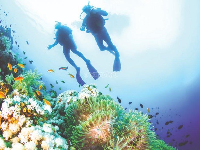 梅诺卡岛海滩碧绿的海水