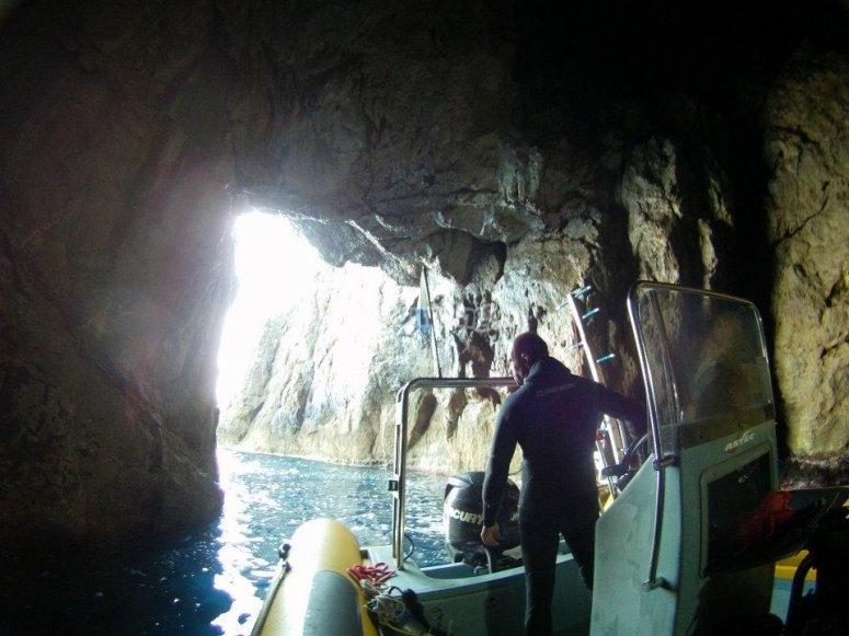 Discover beautiful aquatic corners
