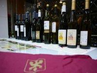 nuestros vinos en exposicion.JPG