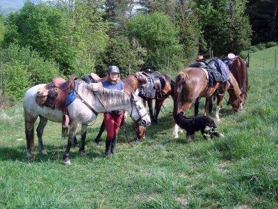 Excursión a caballo medio día cerca de Barcelona