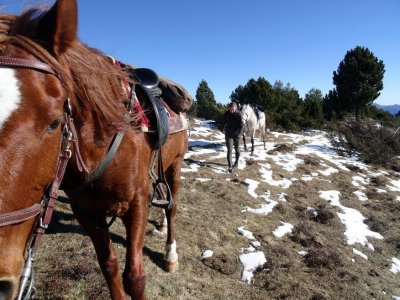 Ruta a caballo con picnic Barcelona 9h