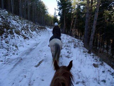 Bono de 10 rutas a caballo alrededores Barcelona
