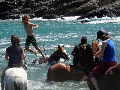 Viaje a caballo desde los Pirineos a la costa