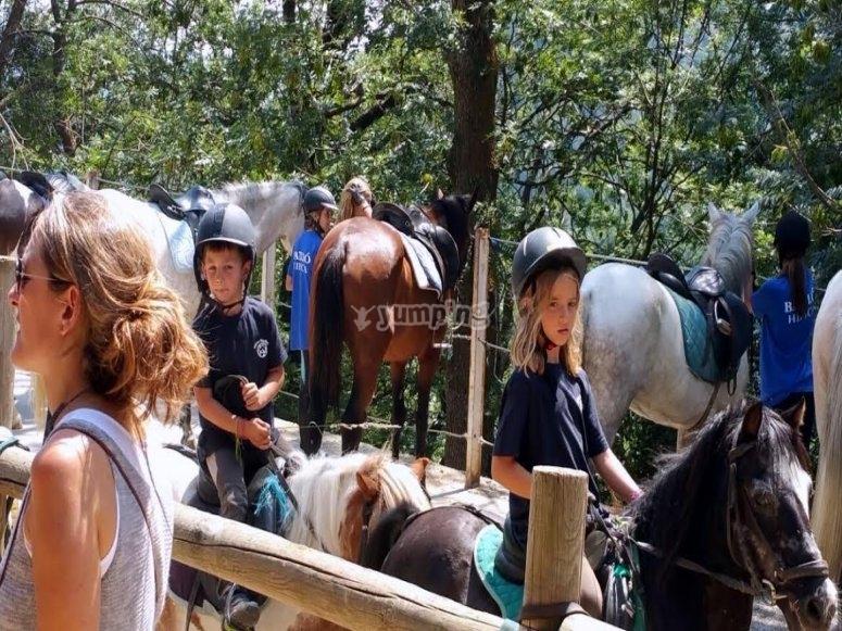 A lomos de los equinos