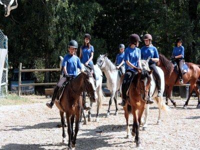 Clase de equitación en pista en Molins de Rei 1h