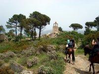 Visita dei monumenti a cavallo