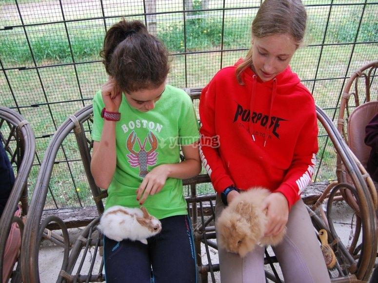 Cuidando de los conejos en Negreira