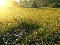 在自行车路线后休息