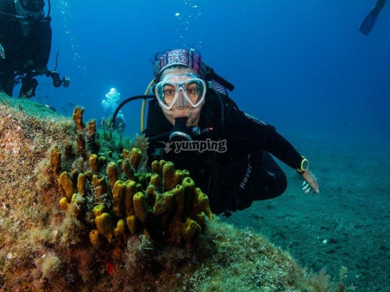 潜水通过珊瑚
