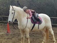 从小接触马匹