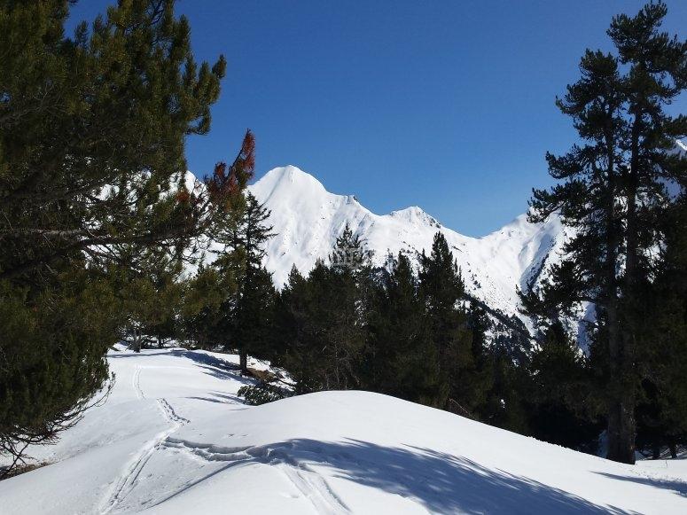 Preciosos paisajes nevados
