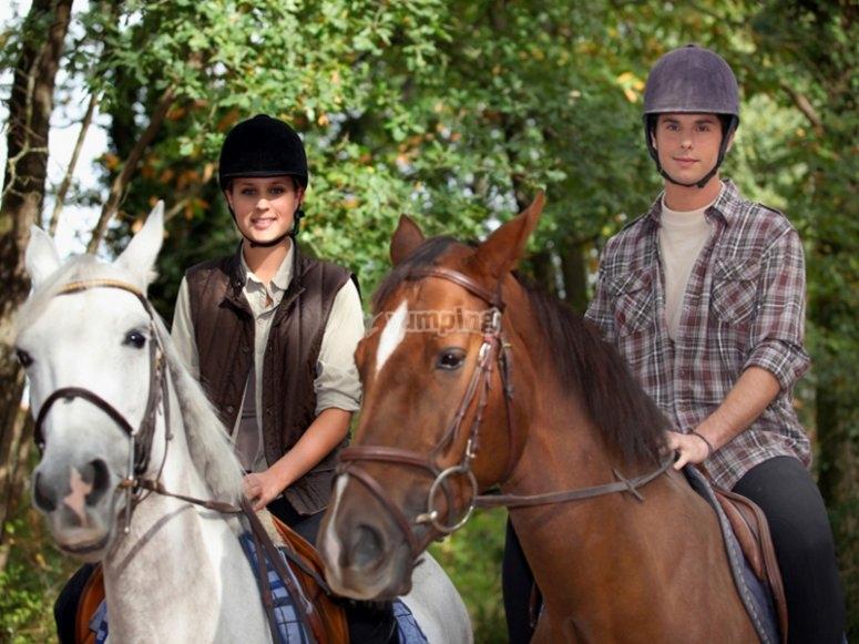 Preciosos caballos equipados