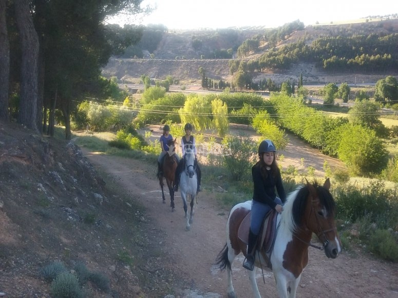 Excursion a caballo por el bosque