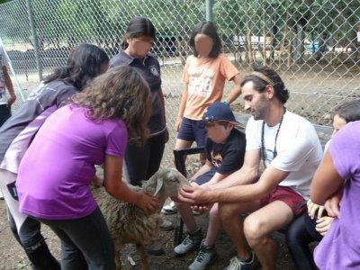 Campamento de verano en ingles Bustarviejo Julio