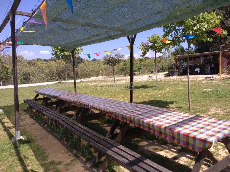 供客人使用的大桌子