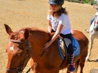 马术营地中的骑马课程