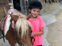 Cuidando al caballo en las clases de hipica