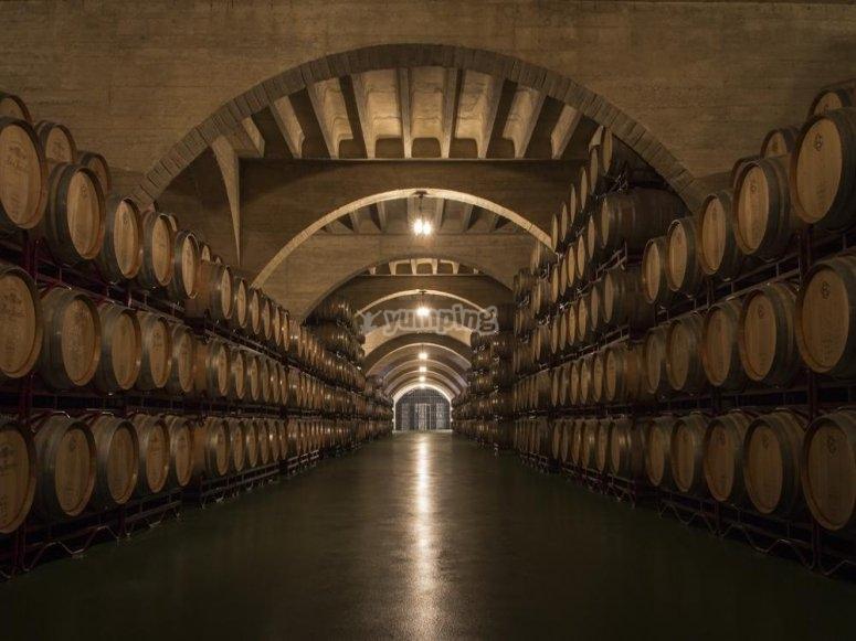 拥有最好的葡萄酒的巨大酒庄