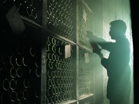 Visita guiada a una bodega de La Rioja