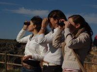 Utilizando los prismaticos