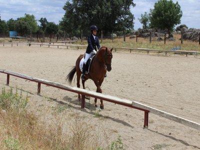 在El Escorial骑马开始上课