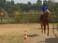 horse riding in the camp montellano