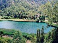 Parco naturale Alto Tajo