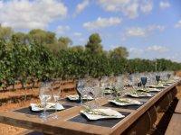 Almuerzo maridado con los mejores vinos