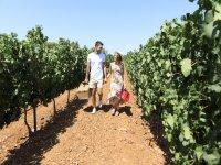 Caminando entre los viñedos