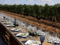 Convite entre viñedos