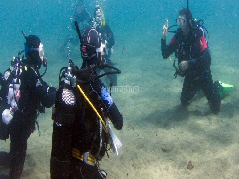 Tecnicas de buceo bajo el agua