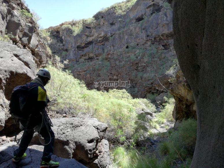 参加峡谷的