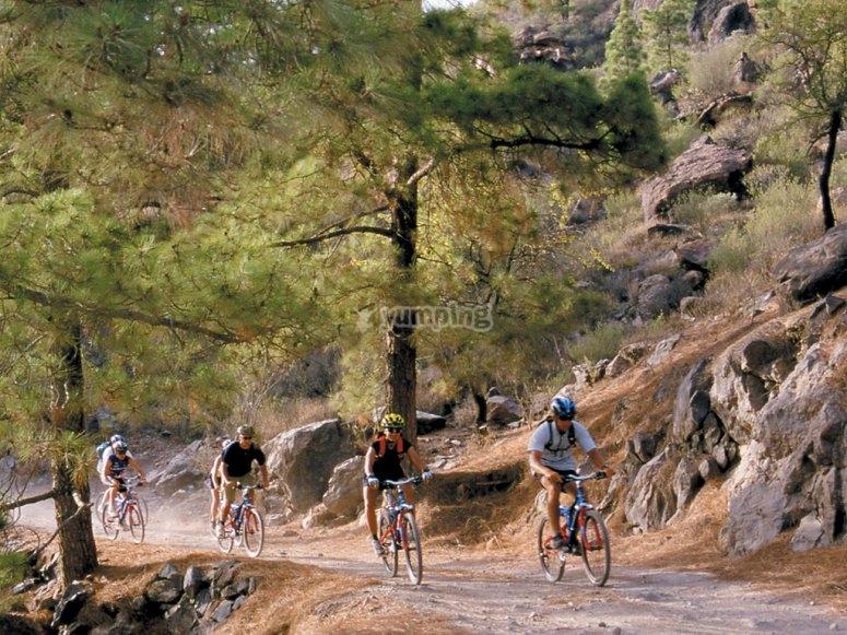 Montando en bici por el campo