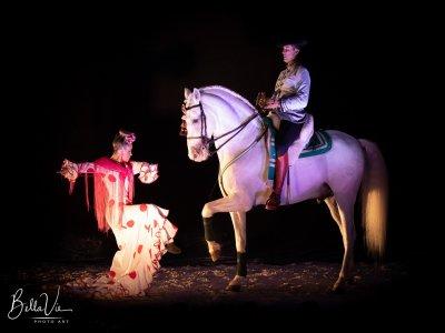 Espectáculo de caballos para niños en Málaga