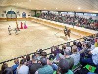 Espectaculo equino en Malaga