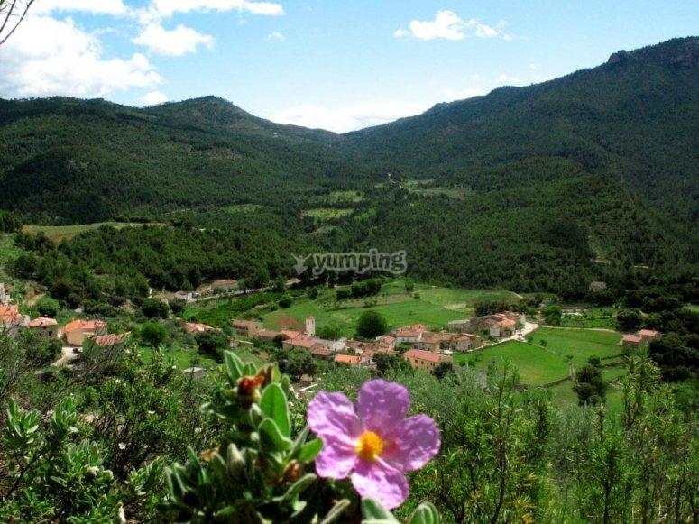 La aldea de Arguellite