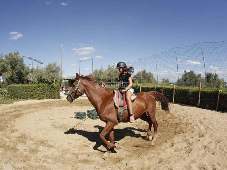 舞蹈战斗骑马监控