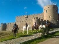 The castle of Adrada