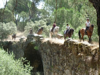MTB route and horse riding La Adrada with lodging