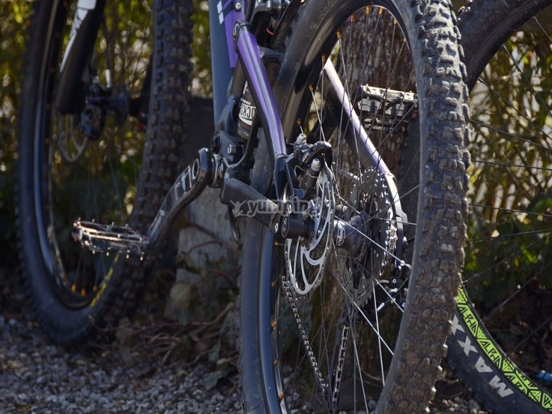 Details of the trial bike