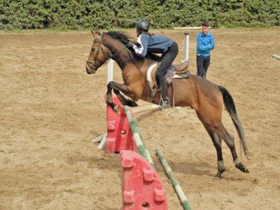 Clases de equitación en La Adrada 1 hora