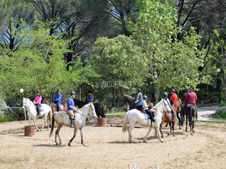 Chavales montando a caballo